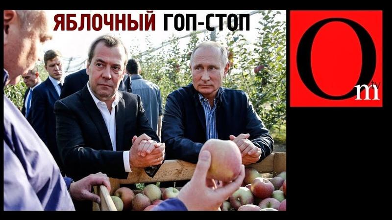 Яблочный криминалитет России Путин крышует рейдеров