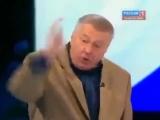 Жириновский избил Путина Драка в прямом эфире flv