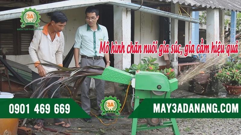 [Máy 3A Đa Năng] MÔ HÌNH CHĂN NUÔI GIA SÚC, GIA CẦM hiệu quả với Máy băm cỏ 3A