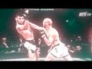 GroovyAR4I_Best of MMA Vines.mp4