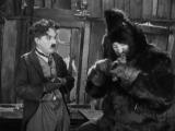 Золотая лихорадка  The Gold Rush (1925)