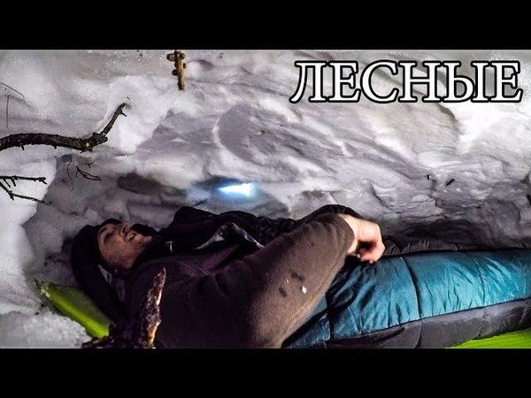 24 ЧАСА В ГОРАХ НОЧЬ В БЕРЛОГЕ НА СКАЛЕ Снежное Укрытие Пятка медведя Горы Снег Бушкрафт