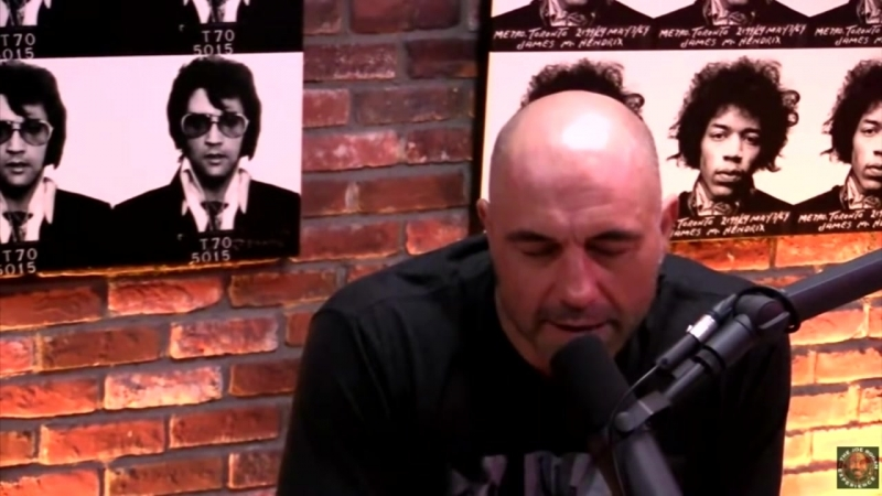 Curb your entire being of Joe Rogan..mp4