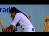 Native American Indigenous