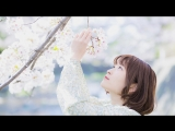【るりこ】さようなら、花泥棒さんを踊ってみた【桜】 sm33008147