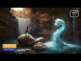 Тайны Чапман от 31.05.2018: Живая и мёртвая