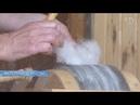 Как прядут из собачьей шерсти Это не зависит от породы Желательно чтобы была не короче 4 5 см