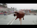 Chinese Sugar Candy Blowing Animals- Pig and Elephant.mp4