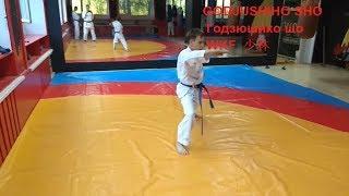 UNSU Kata Karate Shotokan Sensei Dojo 少林寺Sport Olympic