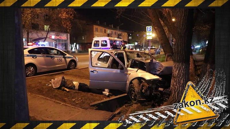 Молодой водитель погиб врезавшись в дерево в Алматы
