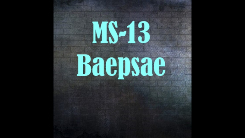 Bts-Baepsae(dance cover by MS-13)