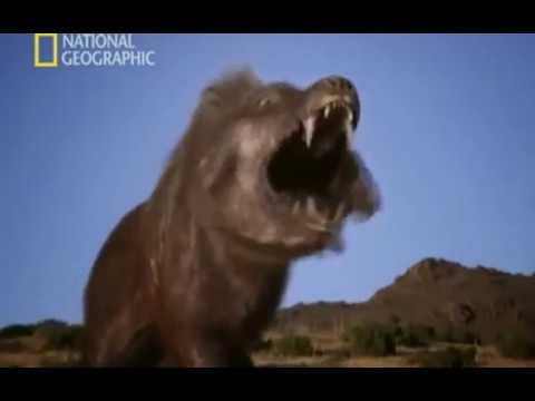 Depredadores Prehistóricos - 06 - El Cerdo Asesino - National Geographic (2007)