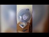 Типичный вентилятор в Украине