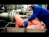 The Most Amazing Automatic Food Processing Machines 2018 - Food Processing Plant Modern Technology