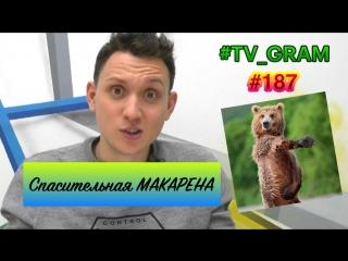 #TV_GRAM #187 (СПАСИТЕЛЬНАЯ МАКАРЕНА)