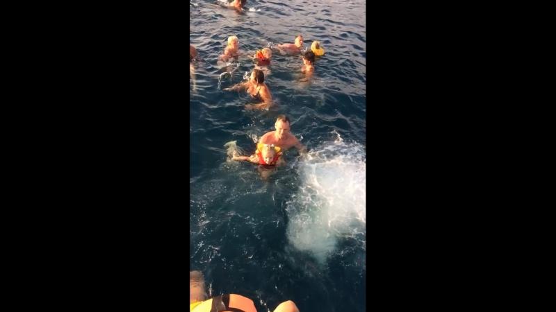 Лазаревское 🌊 Вета плавает в открытом море