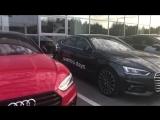 Эффектные Audi с московскими номерами возле автосалона Ауди в Сургуте