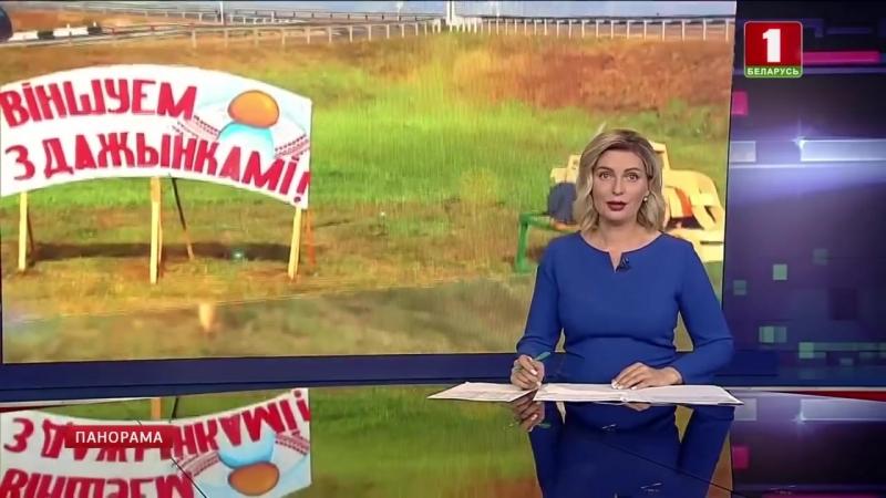В Верхнедвинске проходит фестиваРь ярмарка ДожинкиПанорама