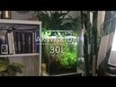 Akwarium 30l / Krasnorosty, Zmiana Filtracji Aquael Asap 800