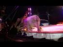 Инцидент в немецком в цирке Кроне