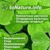 toNature - справочник комнатных растений