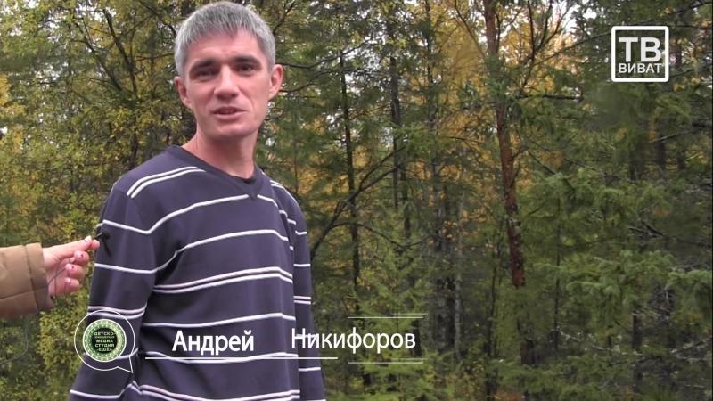 Железногорск-Илимский НОВОСТИ КОРОТКО от 20.09.2018