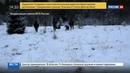 Новости на Россия 24 Российские пограничники задержали 6 азиатов пытавшихся уйти в Эстонию
