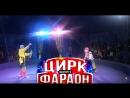 Цирк шапито ФАРАОН приглашает Балаковцев!