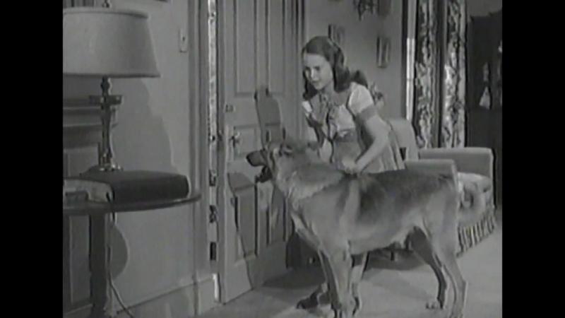 Х/Ф Расти указывает путь (1948г)