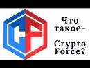 Что такое CryptoForce.В чем суть и доходность от инвестирования в проект Сryptoforce