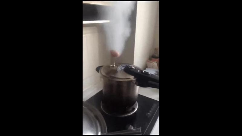 Яйцо-техномагия-гифки-скороварка-4514926