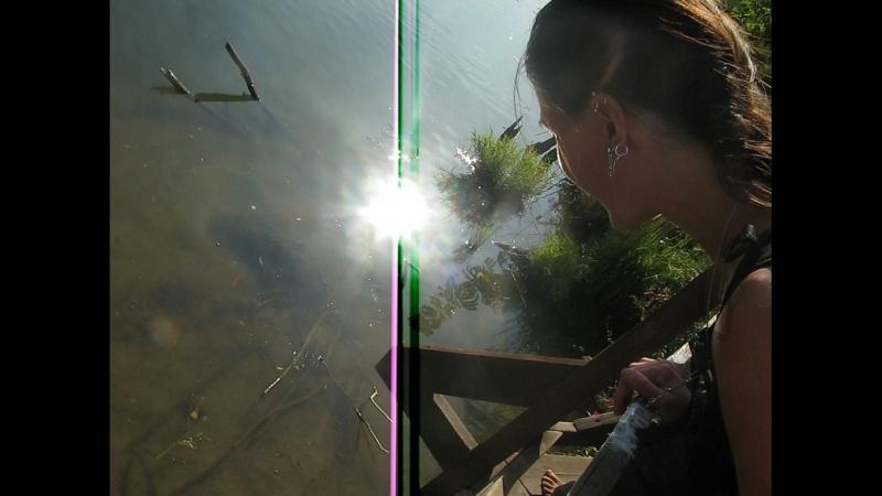 Босоногие на бобровой дорожке ) Парк Покровское Стрешнево