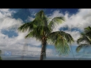 _SOARING_OVER_MAUI 4K__Hawaii_Ambient_Nature_Relaxation_Drone_Film_w_Music DJI_Inspire2_-_80_Min