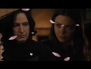 The love in darkness | Severus Snape Pansy Parkinson
