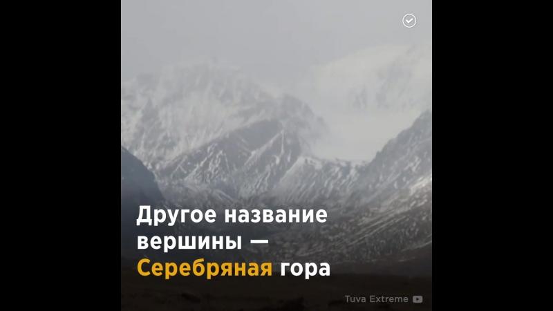 Мөңгүн Тайга