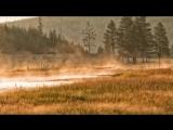 1.Тишина-Спокойствие в мире, полном шума.Часть-1.(NikOsho)Тит Нат Хан