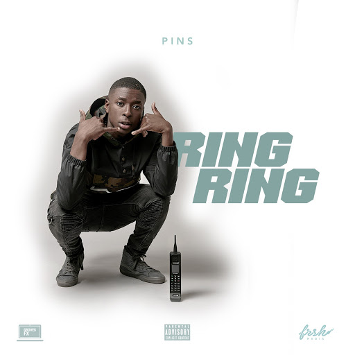 PINS альбом Ring Ring