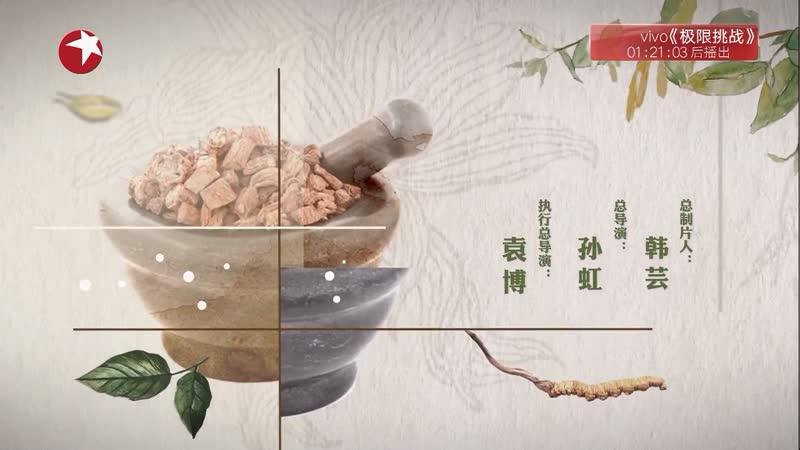 [Документальный фильм о китайской медицине] «Materia Medica China» Эпизод 5: Умение (мастерство, навык) ''ГунФу''.