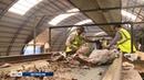 Вологодская область переходит на новую схему сбора и утилизации отходов