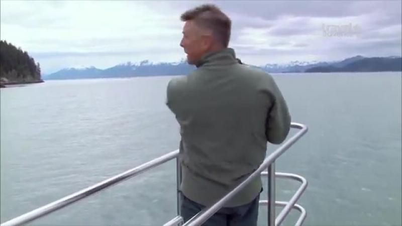 Путешествие на край света Аляска Глейшер Бей Travels to the Edge Alaska Glaci