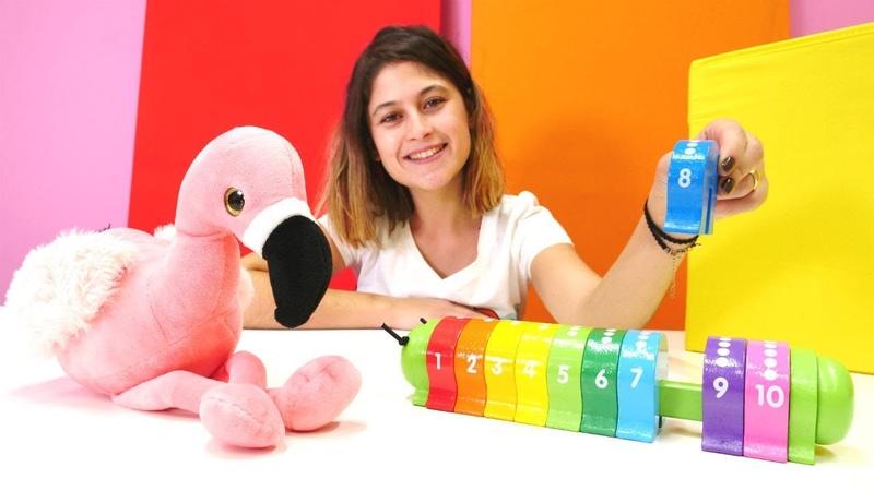 Okul öncesi eğitici video. Flamingo ile saymayı öğreniyoruz