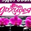 """Центр красоты и здоровья """"Орхидея"""""""