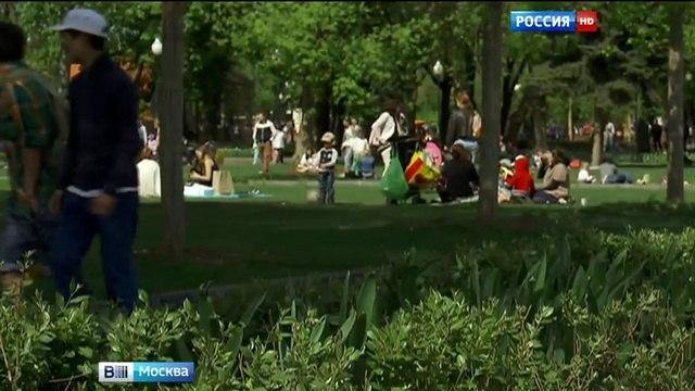 Вести-Москва • На беговых дорожках в столичных парках появится разметка с потраченными калориями