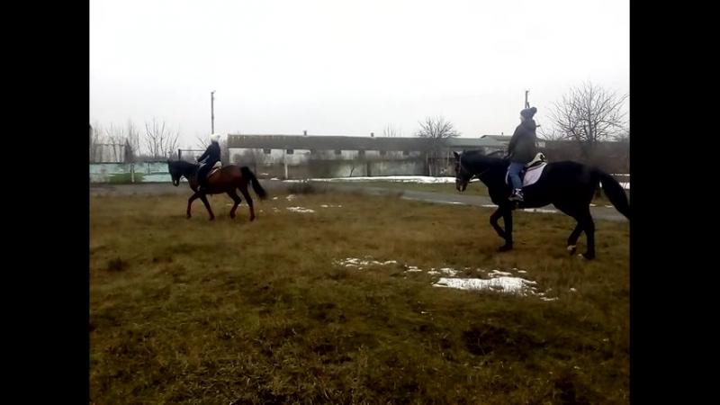 Зимняя тренировка в Орловщине