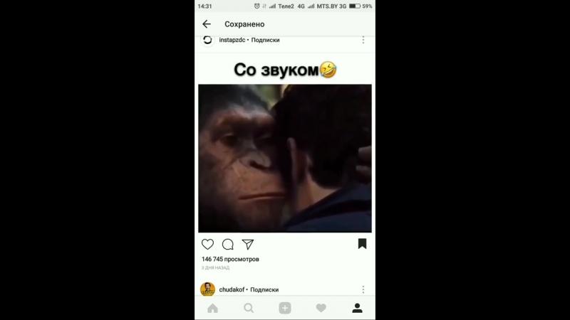 Я_твой_рот_ебал_Прикол_с_обезьяной_