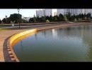 Реконструируемые пруды в Южном Бутово - реально европейский парк получается