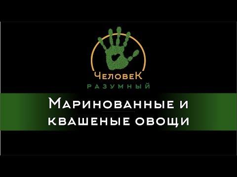 Маринованные и квашеные овощи (Человек-Разумный, 2014)