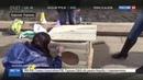 Новости на Россия 24 Активисты в Киеве заблокировали приемную кабмина Украины