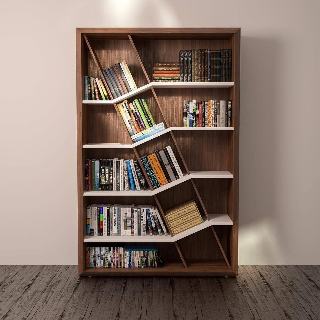 книжные полки и шкафы картинки единственный
