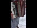 Николай Мишин — Live